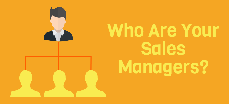 Sales Manager Job Description