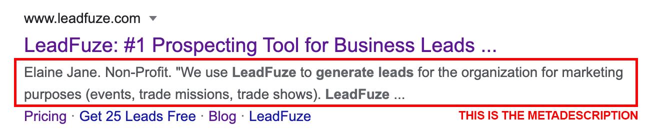 SEO lead generation meta description